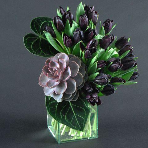 Tulipa + Echeveria 'Perl von Nurnberg' + Anthurium, real nice