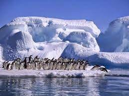 Argentinië vakantie: Antarctica, Argentinië van ongekende schoonheid