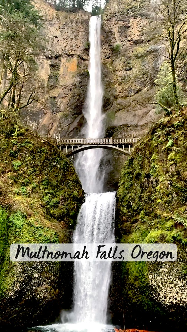 Fun Places To Go, Beautiful Places To Travel, Beautiful Photos Of Nature, Nature Pictures, Vacation Places, Dream Vacations, Oregon Waterfalls, Oregon Travel, Beautiful Waterfalls