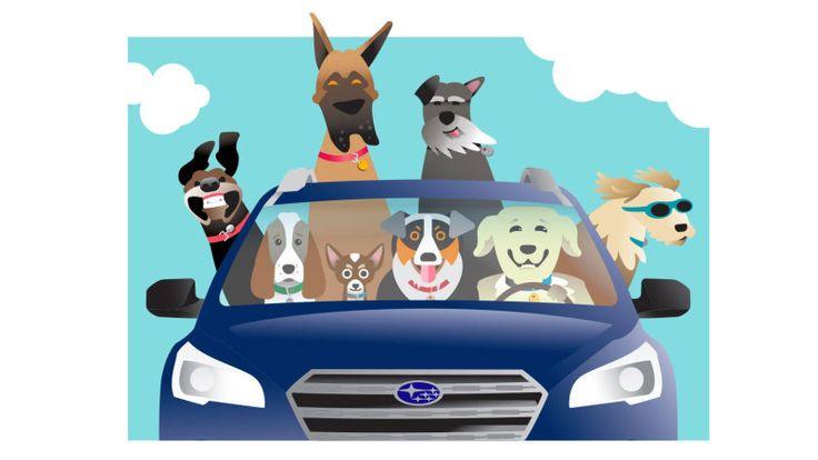 Subaru Loves Pets is funding pet adoptions and homeless pet transport - Autoblog