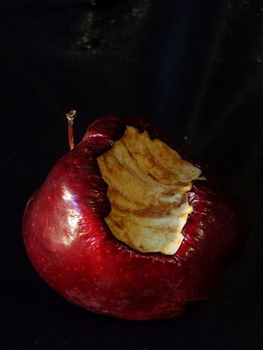 Goldfishdreams Photography, Still Life, Rotten Apple, Apple, Poison Apple, Red Apple, Bitten, Bite