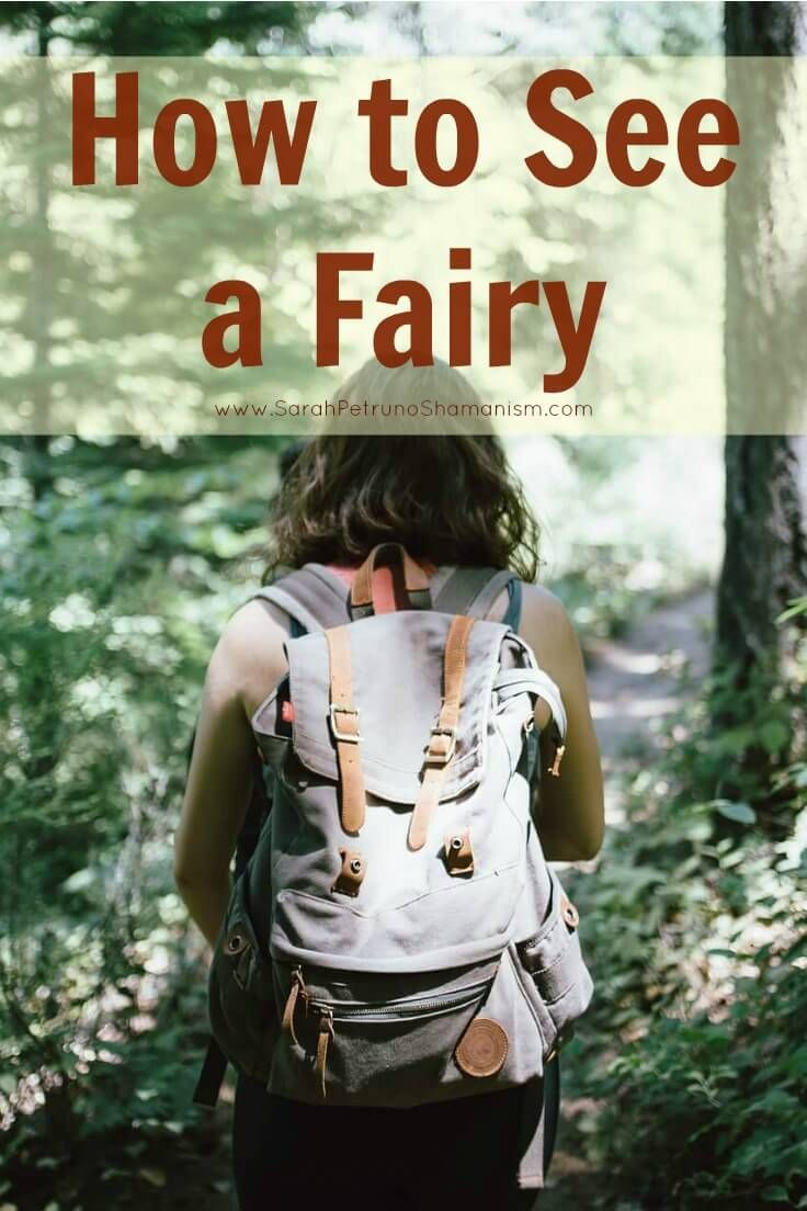 Learn how and where to see fairies. Easy to understand, clear explanations and descriptions on where to find a fairy, and how to see them - what exactly to do, in what location, and what time of day.
