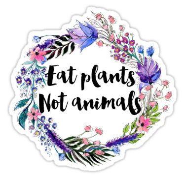 Eat Plants Not Animals Stickers