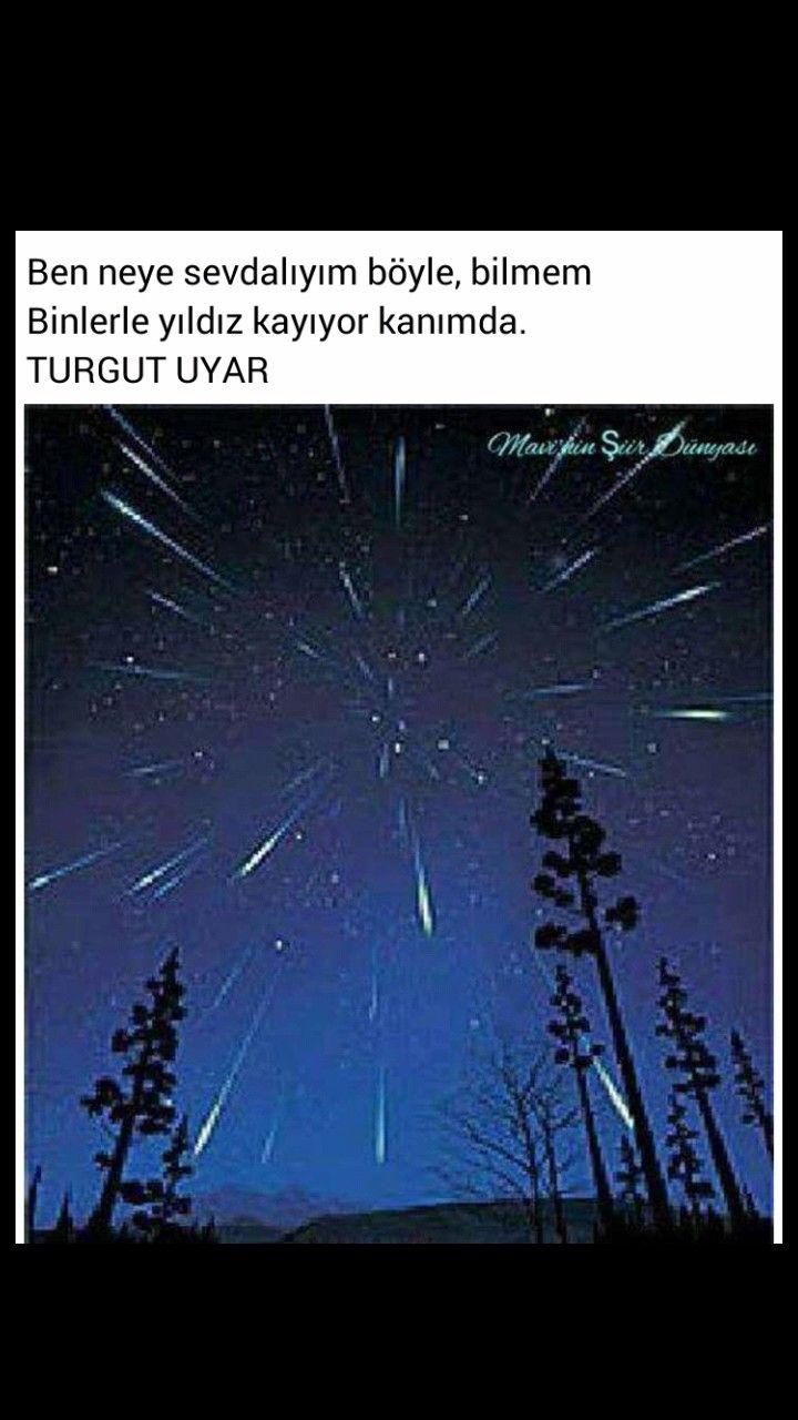 Ben neye sevdalıyım böyle, bilmem Binlerce yıldız kayıyor karnımda Turgut Uyar