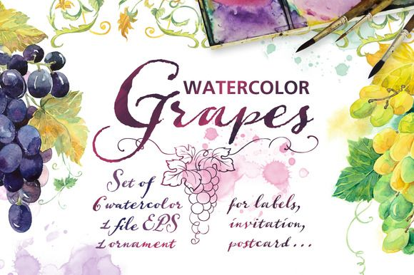 "Set Watercolor ""Grapes"" by Marina.Markizova on @creativemarket"