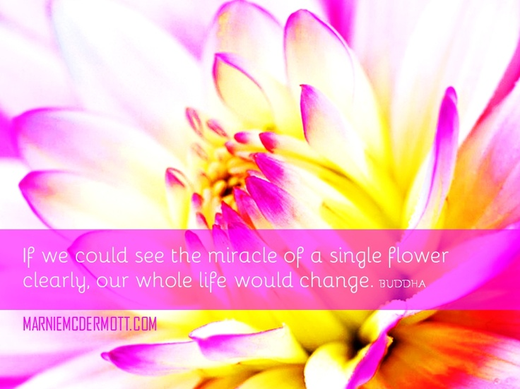 If we could see the miracle of a single flower clearly, our whole life would change.