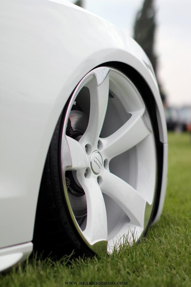Great Car With White Rims Side Note Stay Away From Mud Puddles Explore Cly Wheels And Pinterest Cars Audi For