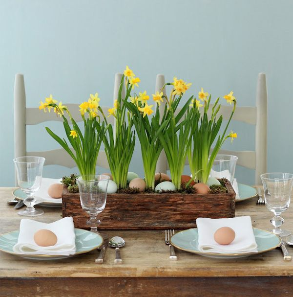 Grow Daffodils For A Pretty Easter Centerpiece 10 Decor Ideas Spring