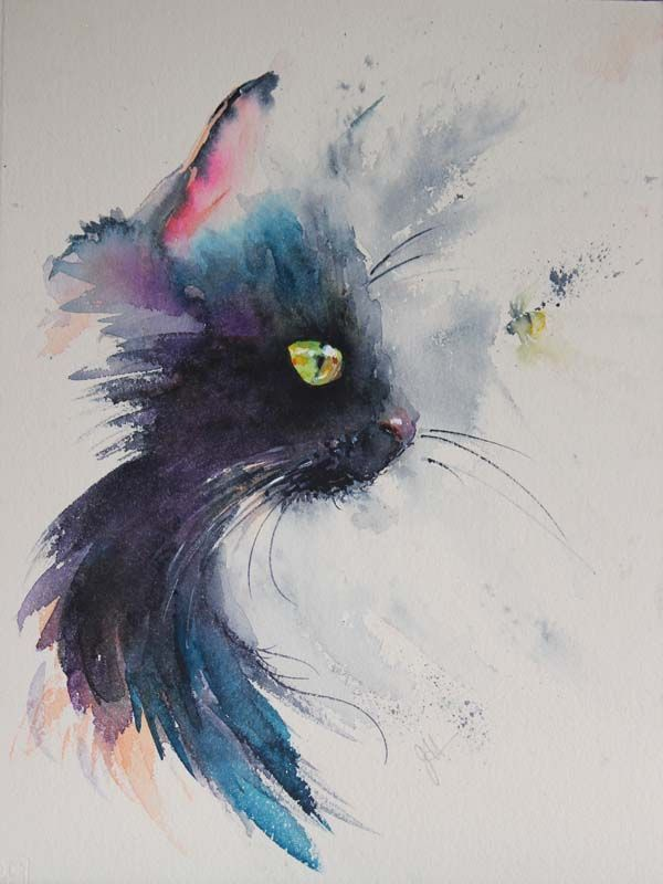 How To Paint A Black Cat In Watercolour