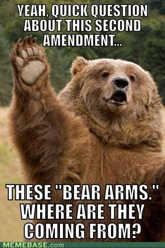 lolLaugh, Funny Pictures, 2Nd Amendment, Second Amendment, Funny Stuff, Things, Bears Arm, Animal, Quick Questions