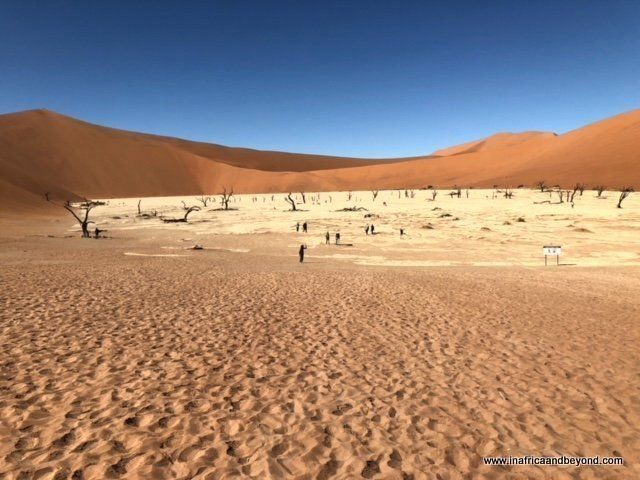 Driving Through Namibia Is Like Paging Through A Coffee Table Book