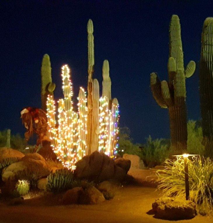 Pin By Brenda Willoughby On Southwest Style Arizona Road Trip Arizona Style Desert Homes