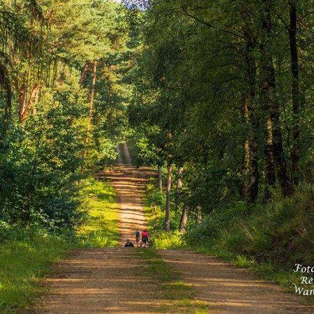 Fotografische Reisen und WanderungenDer Wander- und Reiseblog, Tipps zum Wandern in Deutschland, Rheinland Pfalz und NRW- TOP Ausflugsziele- Fotos - Wanderberichte-Premiumwege - Rundwege - Streckenwanderungen-GPS, Wandern im Bergischen Land