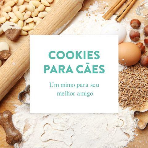 Já pensou em cozinhar para seu melhor amigo? O WESTWING te ajuda! Acesse o e-book Cookies para Cães e veja receitas de especialistas.