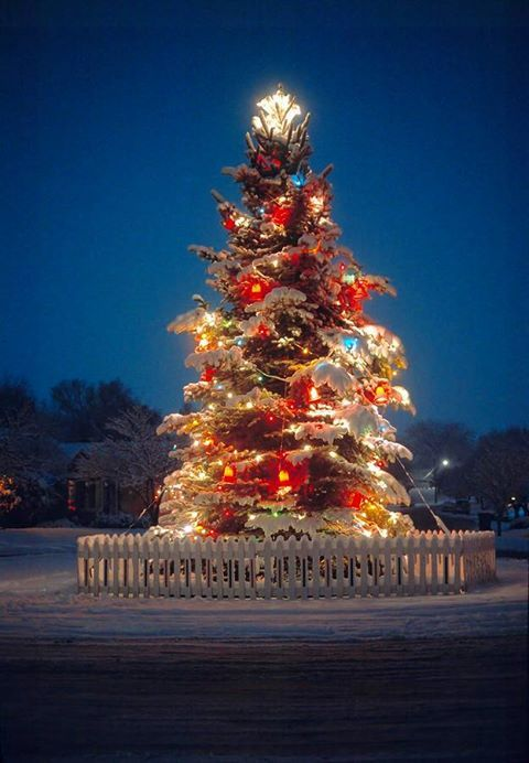 570 best All Things Christmas images on Pinterest Christmas time - outside christmas decorations sale