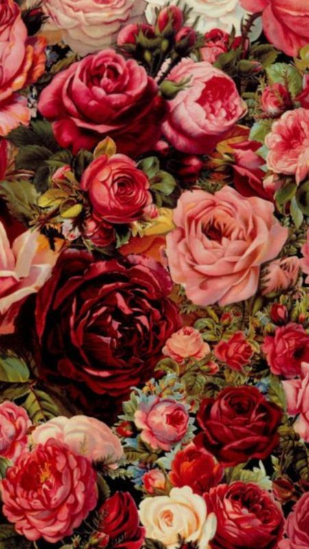 Fondos De Pantalla Para Tu Iphone Papel Mural Floral Flores Y Rosas