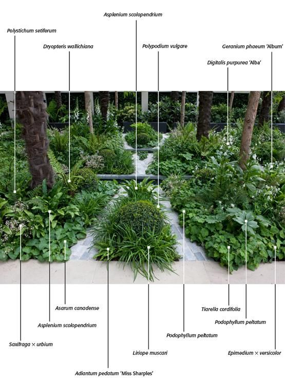 12773 best images about garden on pinterest window boxes float boat diagram sewage pump float wiring diagram