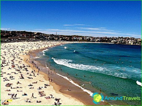 Пляжи Сиднея: фото, видео. Лучшие песчаные пляжи в Сиднее (Австралия)