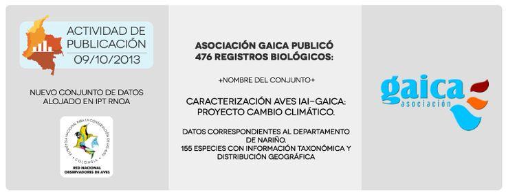 Actividad de publicación 09/10/2013