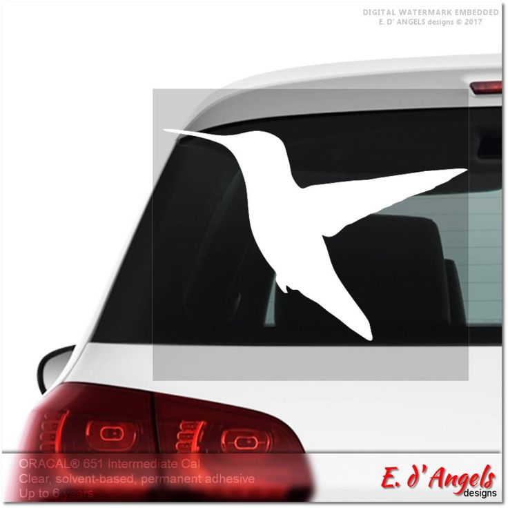 Excited to share the latest addition to my #etsy shop: Hummingbird decal, car decal, vinyl decal, vinyl decal custom, decals, car decals for girls, car decal funny, vinyl car decal http://etsy.me/2CzQj4k #everythingelse #hummingbirddecal #cardecal #vinyldecal #vinyldec