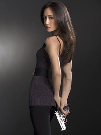 The series Nikita begins where the movie ends. Former spy and assassin Nikit played by Maggie Q wants to destroy the secret agency Division that trained her - and now wants to kill her. On her side is Alex, a young girl with secret past who is Nikitas spy inside Devision.