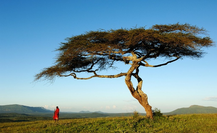 At the Serengeti border