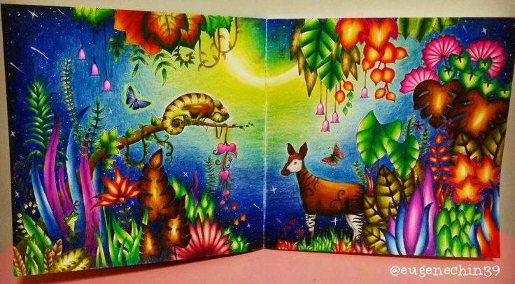 The 470 Best Images About Magical Jungle Johanna Basford