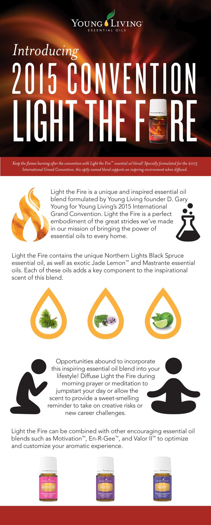 Young Living Essential Oils:  Light the Fire Essential Oil Blend | For more information and to order yours, visit:  WWW.THESAVVYOILER.COM