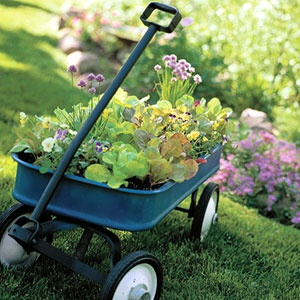 1000 Images About Red Wagon Planter On Pinterest Small