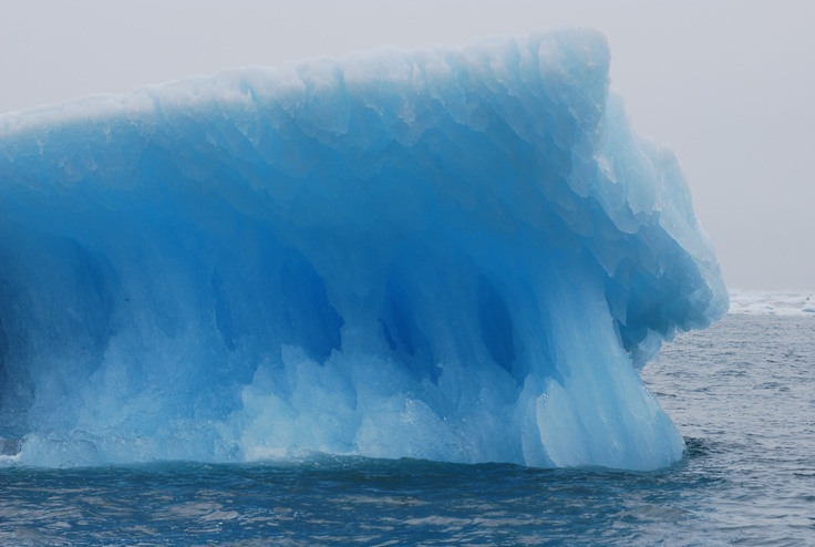 The color of blue ice blew our minds - Meares Glacier Cruise - Alaska