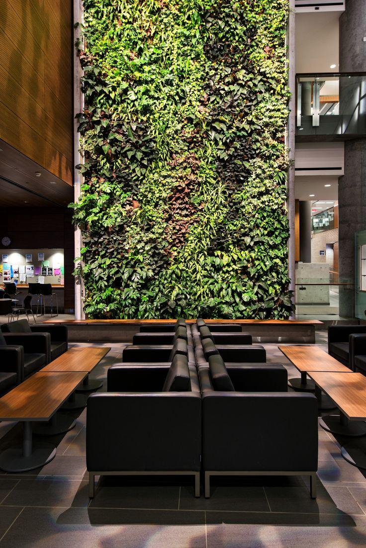 Livewall green wall system make conferences more comfortable - Gallery University Of Ottawa Kwc Architects Diamond Schmitt Architects 16