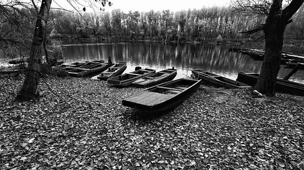 Autumn bank   Boats on the riverbank - Tisza, Mártély.