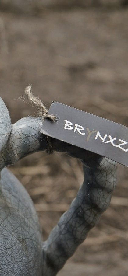 brynxz.jpg