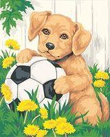 Поделки ручной работы алмаз живопись украшения дома горный хрусталь квадрат дрель смола мозаика вышивка симпатичная собака футбольной вышивки крестом