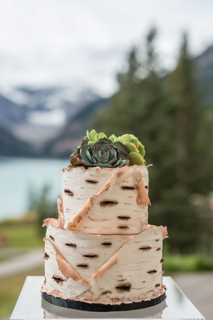 Unique Canadiana style, nature inspired, birch wood bark wedding cake with succulents. Photo by one-edition.ca, cake by Cake Sensations.