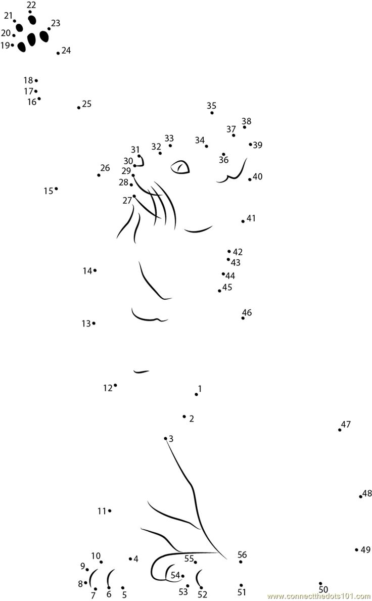 Cat Dot To Dots Connect The Dots Bengal Cat Worksheet