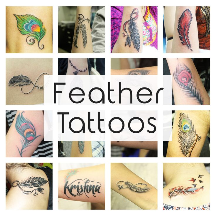 Feather Tattoos And Its Designs Ideas Images And Meanings: 1000+ Ideas About Feather Tattoo Meaning On Pinterest