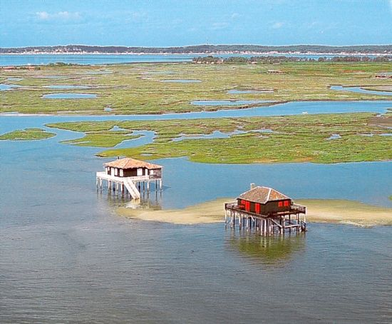Cabanes Tchanquées et Ile aux Oiseaux, Bassin d'Arcachon