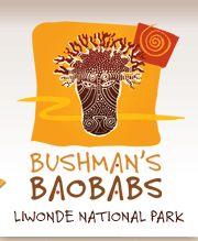 Bushman's Baobabs