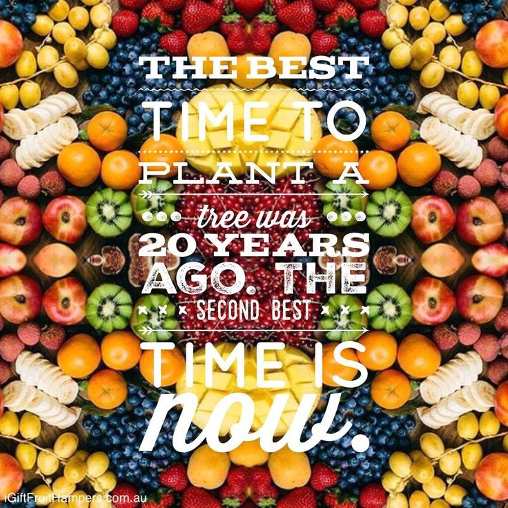 The best time to plant a tree was 20 years ago. The second best time is now.  #quote #quotes #life #live   #health