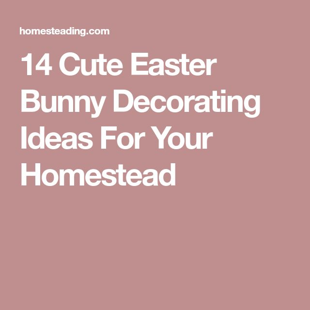 best 25 cute easter bunny ideas on pinterest easter bunny ears resume rabbit cost - Resume Rabbit