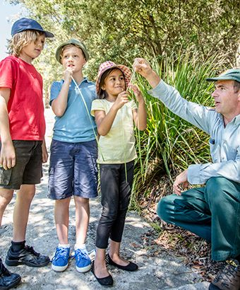 Enjoy the summer holidays with some school holiday fun with NSW National Parks and Wildlife Service. They are holding Discovery Tours  including WilderQuest Cultural Adventures and WilderQuest Rockpool Discovery at Glenrock State Conservation Area. For a night adventure, join a WilderQuest Family Twilight Adventure at Awakabal Nature Reserve.  There's also a Roll and Stroll with Bubs and Tots at Blue Gum Hills Regional Park plus lots more. Photo: Rosie Nicolai/OEH