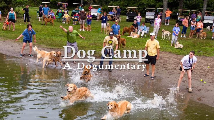Dog Camp Movie Trailer
