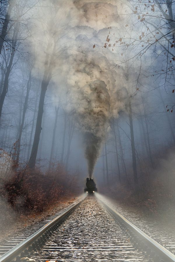 Train, steam and mist
