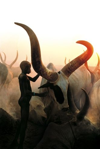 Dinka Child and His Animal, South Sudan by Carol Beckwith and Angela Fisher