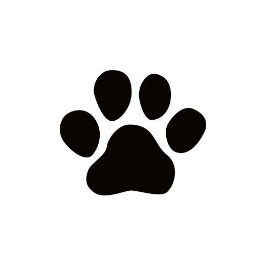 Ms de 25 ideas increbles sobre Cachorros en adopcion en
