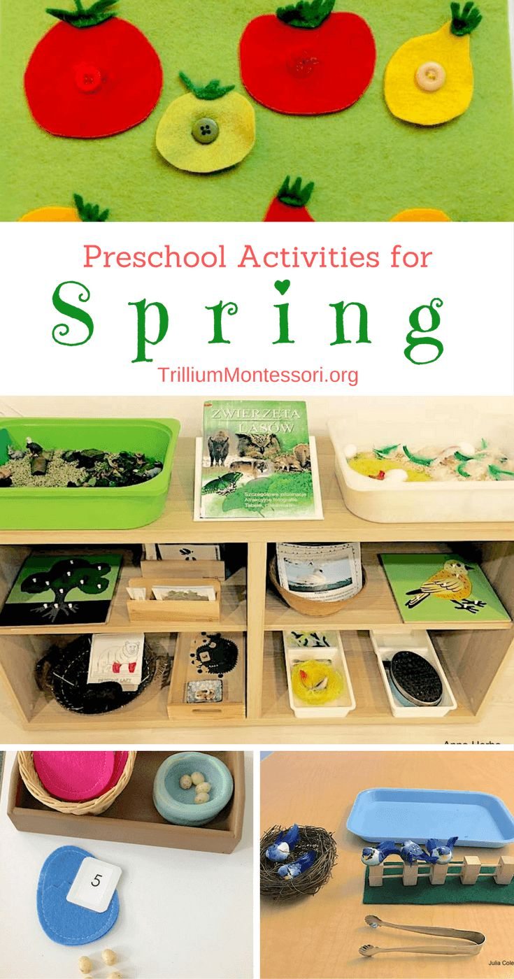 15+ activities and ideas for a spring theme in your Montessori inspired preschool classroom. Learn about birds, plants, bugs, and more.