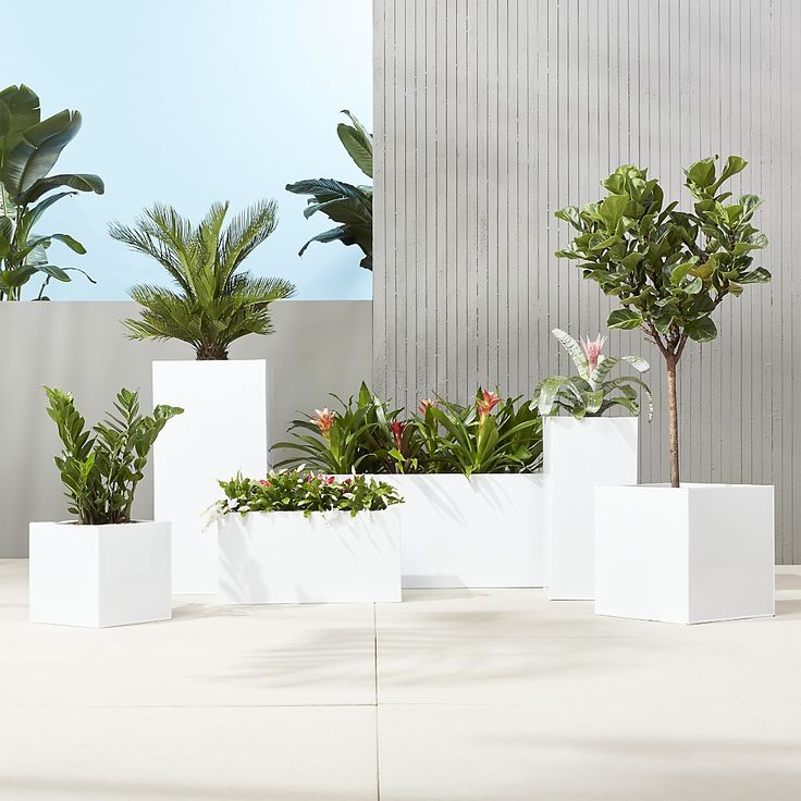 Shop blox rectangular galvanized high-gloss white planters.   Bright white planters square up sleek and modern.  Protected for indoor and outdoor settings, hi-gloss lacquered galvanized steel plays up refined industrial to dramatic effect.