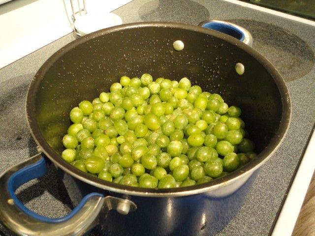 Grapes In a Pot 640x480 Homemade Garden Grape Jam, Welchs Take Note!