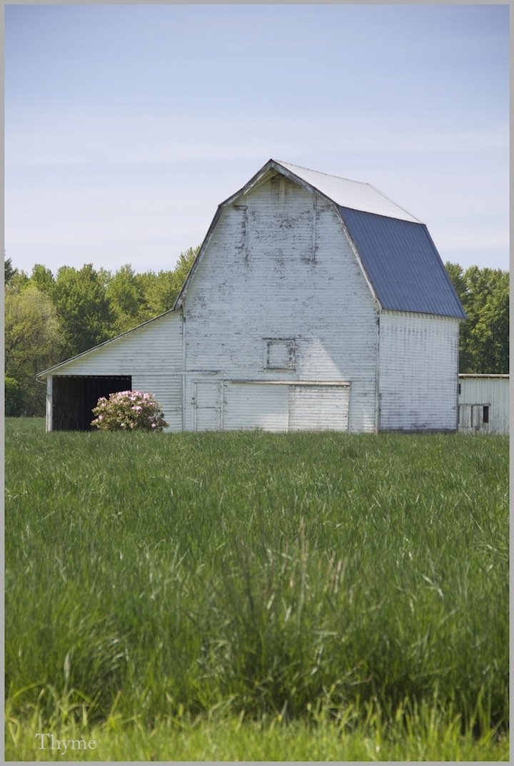 Barns: 1000+ Ideas About Country Barns On Pinterest